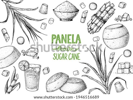 Panela sugar sketch. Hand drawn vector illustration. Vintage design template. Cane sugar. Gur or jggery powder. Organic unrefined. Vintage Design for packaging.