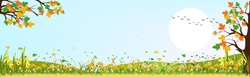 Panorama landscape of Countryside landscape in spring or summer with copy space,Vector spring landscape of maple trees with leaves falling, daffodils   flowers, Summer landscape with summer flowers.