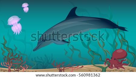 panorama of the underwater