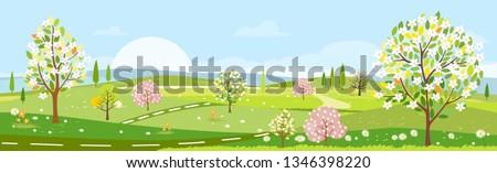 panorama view of spring village