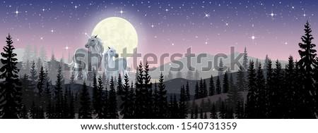 panorama wonderland landscape