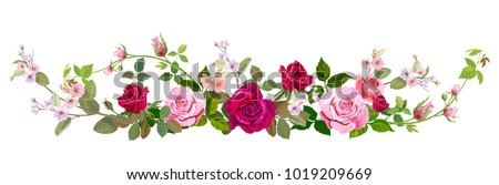 Panoramic view: bouquet of roses, spring blossom. Horizontal border: red, mauve, pink flowers, buds, green leaves on white background. Digital draw illustration in watercolor style, vintage, vector #1019209669