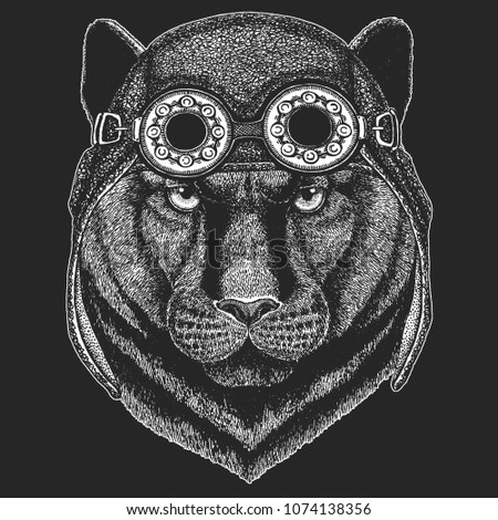 Stock Photo Panther Puma Cougar Wild cat Hand drawn image for tattoo, emblem, badge, logo, patch, t-shirt Cool animal wearing aviator, motorcycle, biker helmet.