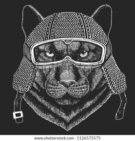 Stock Photo Panther, Puma, Cougar, Wild cat. Vintage motorcycle hemlet. Retro style illustration with animal biker for children, kids clothing, t-shirts. Fashion print with cool character. Speed and freedom.
