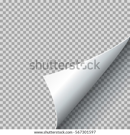 Paper curl vector illustration. Curled page corner with shadow on transparent background. Sheet with bent edge corner Foto stock ©