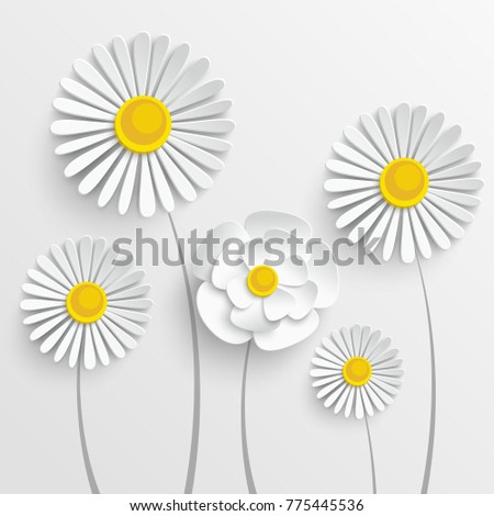 Paper flower. Chamomile are cut from paper. Beautiful heart on a white background. Wedding decorations. Wedding lace. Template greeting card, blank floral wall decor.