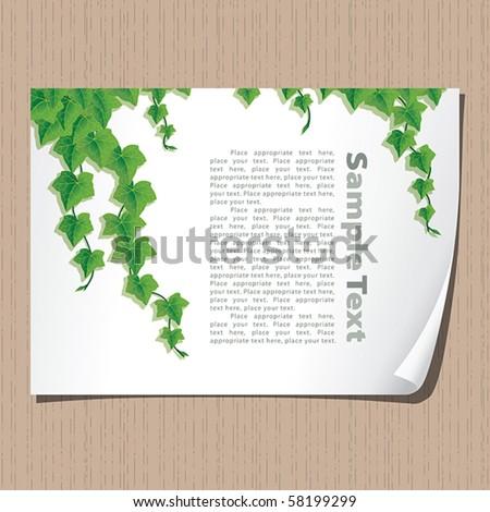 ivy borders