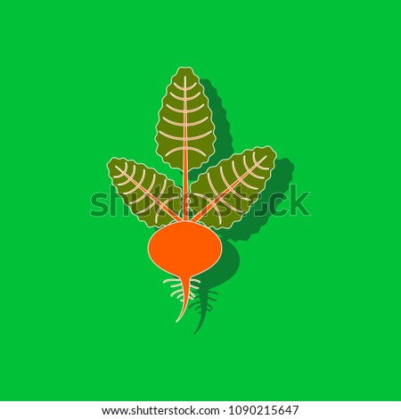 paper sticker on background of beet beetroot