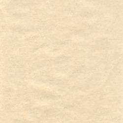 Paper texture background - vector