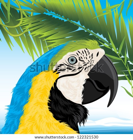 Parrot and palm branches. Vector