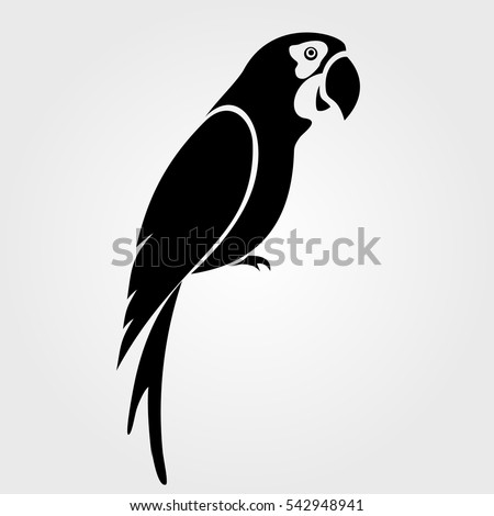 parrot icon isolated on white