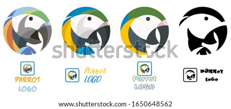 parrot or macaw colorful vector