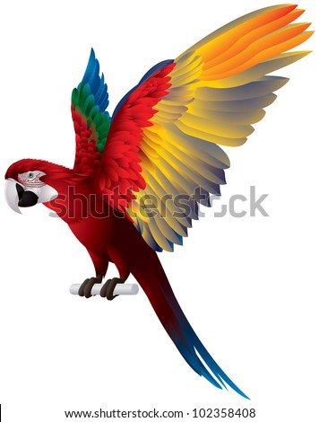 parrot spread wings  red and