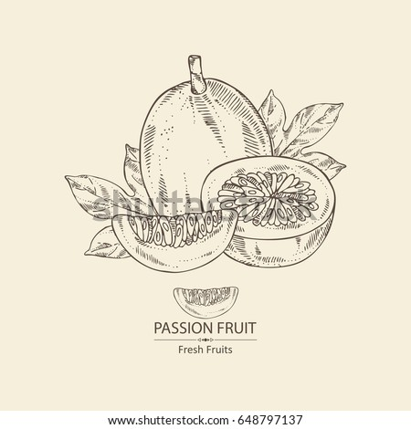 Passion fruit: fruit, passion slice and leaves. Vector hand drawn illustration