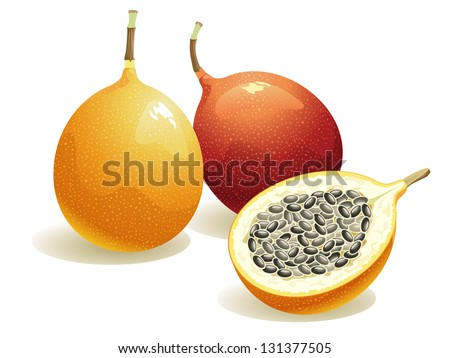 Passion Fruit, Isolated Vector Fruit