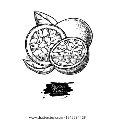 Passion fruit vector drawing. Hand drawn tropical food illustration. Engraved summer passionfruit. Whole and sliced maracuya with leaves. Botanical vintage sketch for label, juice packaging design