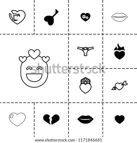passion icon collection of 13