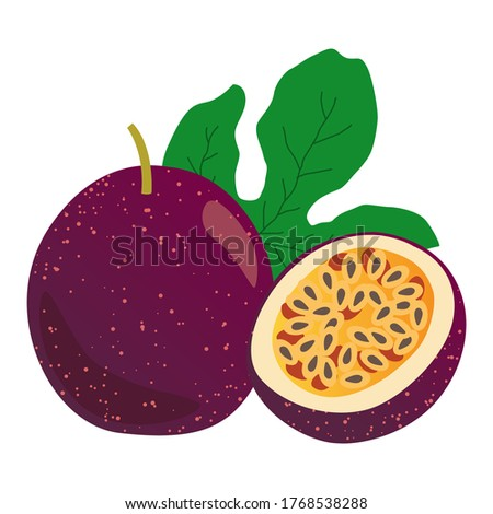 passionfruit vector illustration, set of passionfruit and leaf isolated on white background