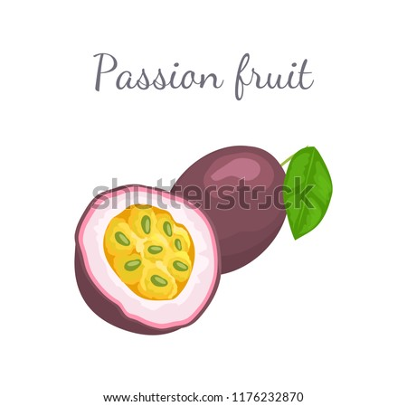 Passionfruit with leaf, exotic juicy fruit whole and cut vector isolated. Maracuja, parcha, grenadille or fruits de la passion. Tropical edible dieting food