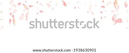 Pastel Sakura Petal Vector White Background. Purple Fall Cherry Petal Backdrop. Peach Petal Springtime Card. Modern Flower Petal Design.