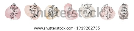 Pastel  Story Highlight Cover Icon. Highlight Story. Drawn Floral Logo Element. Botanical Floral Story