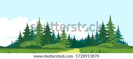 path through the forest with