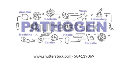 pathogen vector banner design concept, flat style with thin line art icons on white background