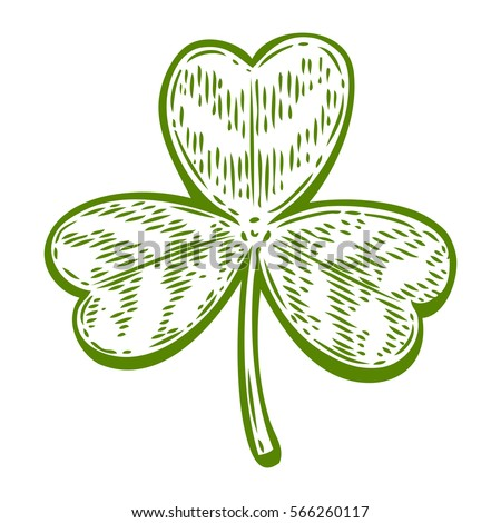 Patrick day good luck three leaf clover. Vintage hand drown color vector engraving illustration for info graphic, poster, web, mobile. Isolated on white background