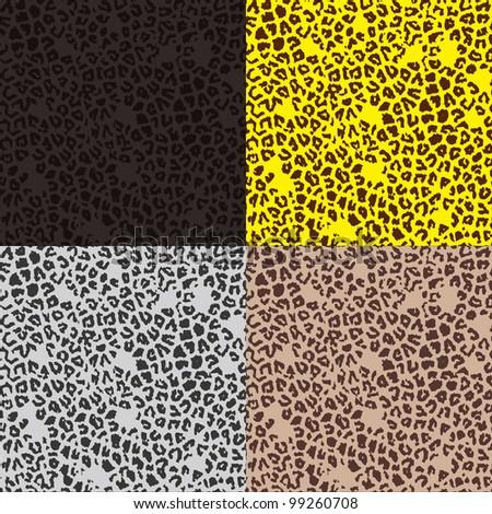 Pattern of leopard