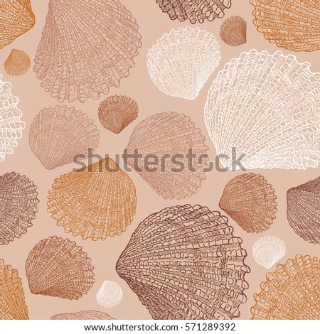 pattern of the drawn seashells