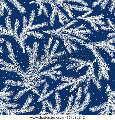 pattern of the frozen fir