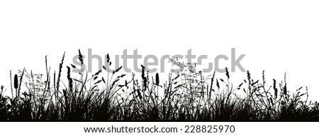 pattern strip of grass vector