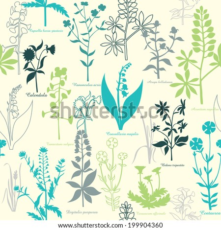 pattern with medicinal plants