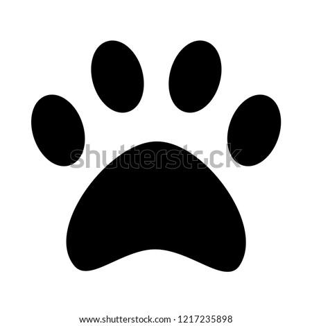 paw   animal   foot