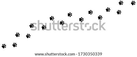 Paw print of dog, cat, puppy pet footprint,  print vector icon