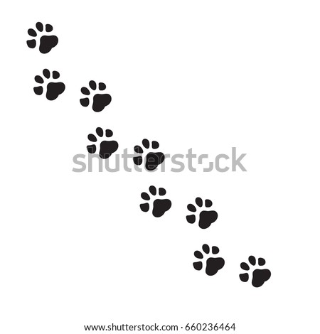 paw print vector illustration