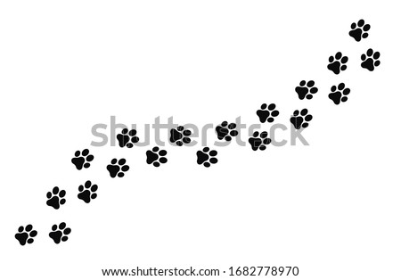 Paw prints of dogs, vector illustration