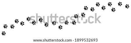 Paw vector foot trail print of cat. Dog, pattern animal tracks  isolated on white background, backgrounds, vector icon Illustration
