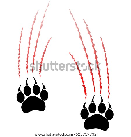 paws of a big cat panther or