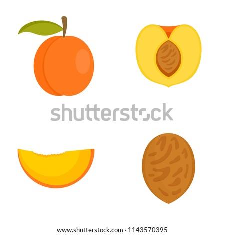 peach apricot tree slices fruit