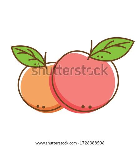 Peach vector. Peach doodle logo. Peach on white background. Peach logo design.