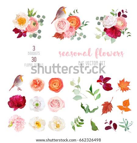 peachy rose  white and burgundy