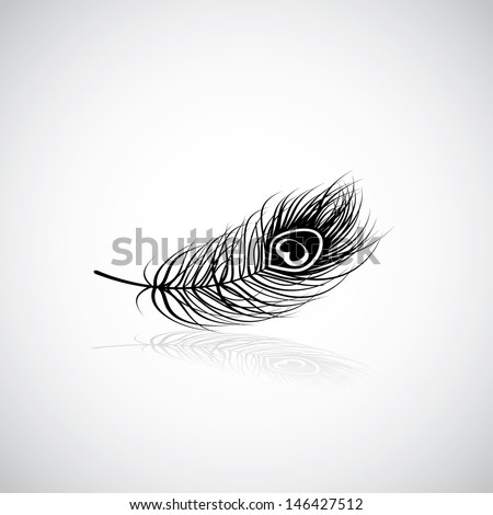 Peacock Feather Vector Black And White