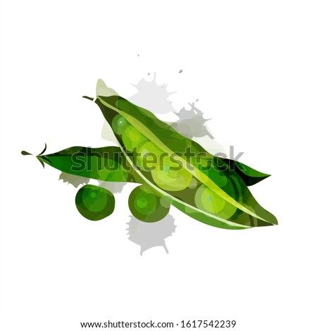 Peas vector. Green peas isolated on white background. Vector illustration of fresh food in a flat style. Icon, banner.