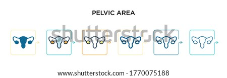 Pelvic area vector icon in 6 different modern styles. Black, two colored pelvic area icons designed in filled, outline, line and stroke style. Vector illustration can be used for web, mobile, ui