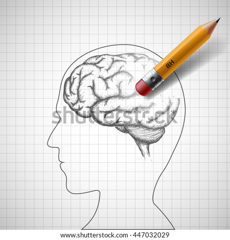pencil erases the human brain
