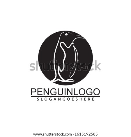 Penguin bird vector logo. Arctic animal symbol, North Pole and South Pole.