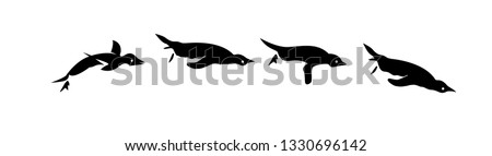 penguin set of jump to swimming