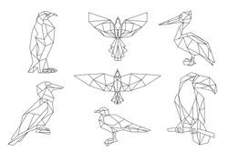 Penguin, toucan, seagull, pelican.Bird triangular icon set, geometric trendy line design. Vector illustration for tattoo or coloring book.