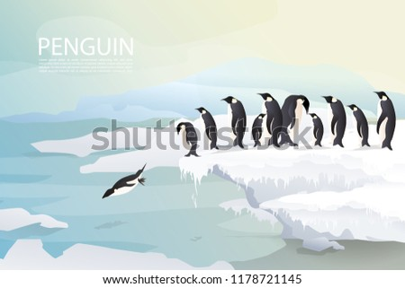 penguins and family friends